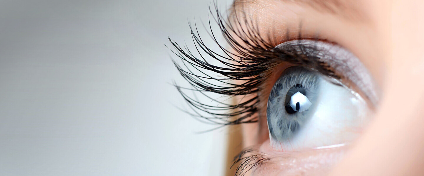 Contact Lens Services